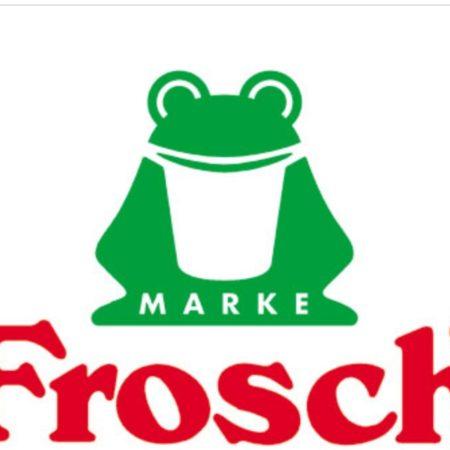 Чистящие и моющие средства от производителя Frosh
